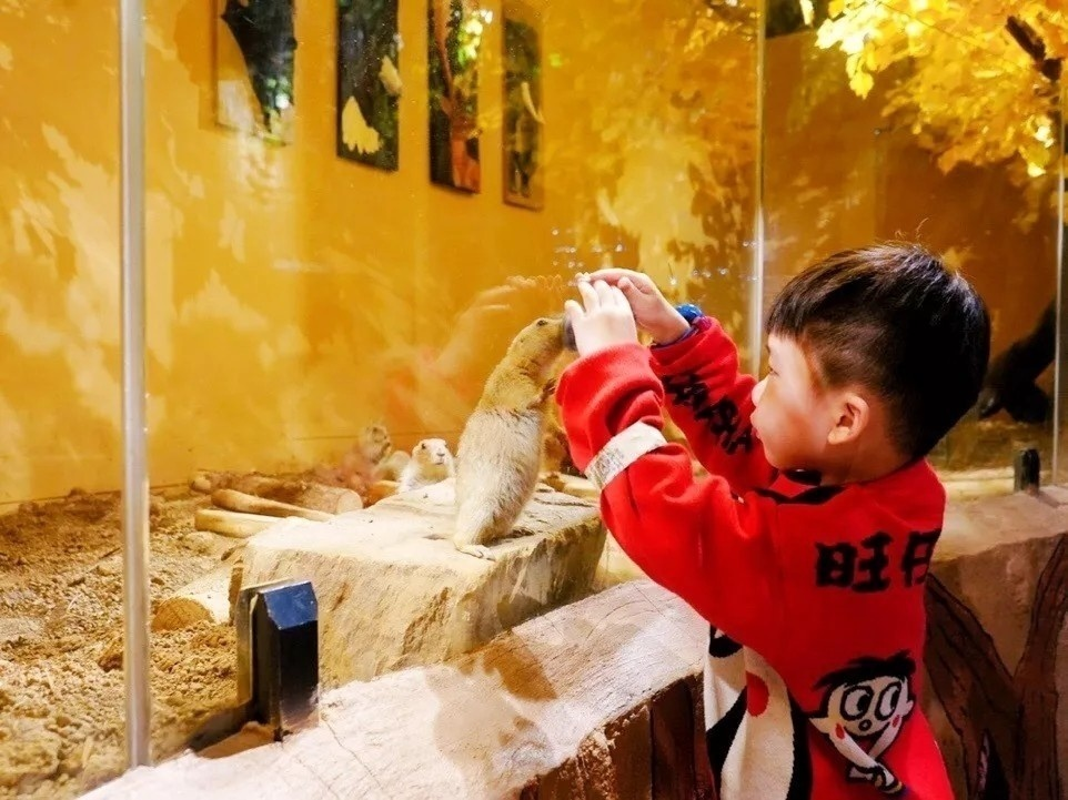 【上海】5店通用| 爆!99元抢MR.ZOO小小动物元室内动物园1大1小亲子门票!时下爆火的室内动物园!丛林山洞、奇幻海洋、溪流雨林、萌趣农场6大主题区域+150种小动物,给你沉浸式体验!