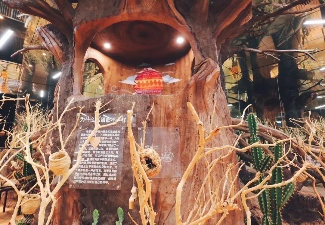 【上海5店通用】148元抢[MR.ZOO小小动物元室内动物园]1大1小亲子门票+玩偶!时下爆火的室内动物园!丛林山洞、奇幻海洋、溪流雨林、萌趣农场......6大主题区域+150种小动物,给你沉浸式体验!